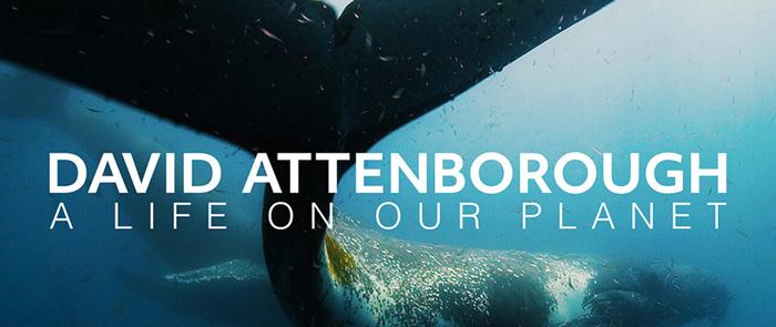 "film Davida Attenborough ""Our Planet"""